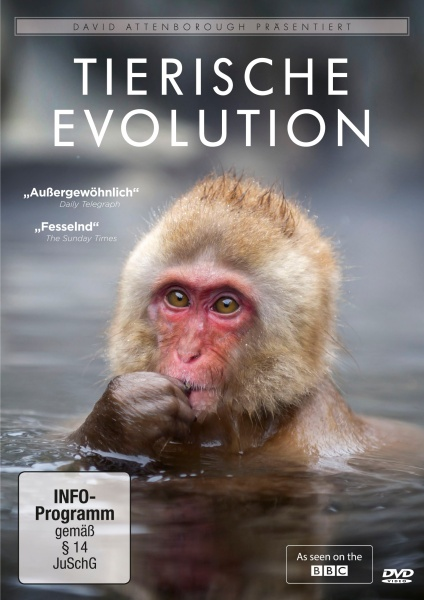 David Attenborough: Tierische Evolution (DVD)