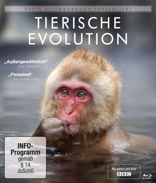 David Attenborough: Tierische Evolution (Blu-ray)