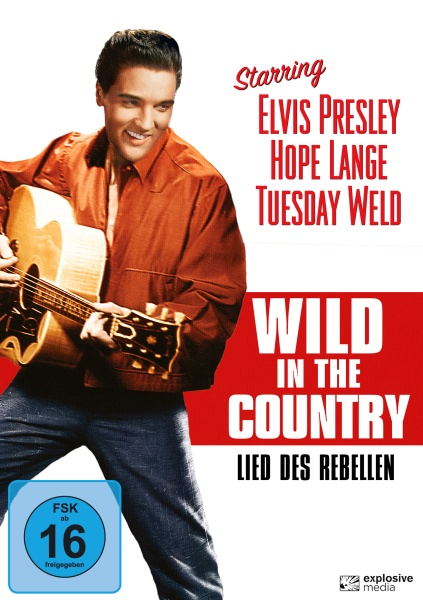 Lied des Rebellen (Wild in the Country) (DVD)