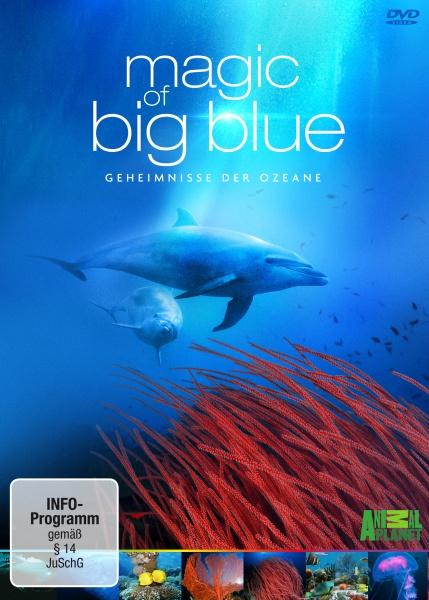 Magic of Big Blue (3 DVDs)