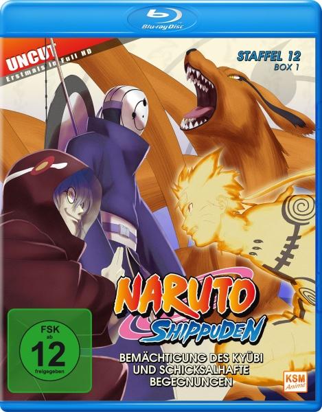 Naruto Shippuden - Bemächtigung des Kyubi und schicksalhafte Begegnungen - Staffel 12, Box 1: Folge 463-480 (2 Blu-rays)