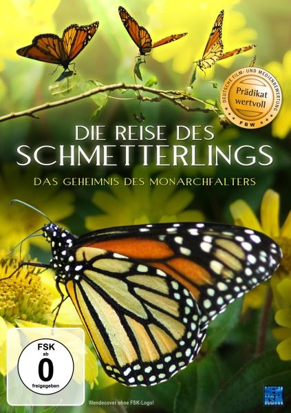 Die Reise des Schmetterlings - Four Wings and a Prayer (DVD)