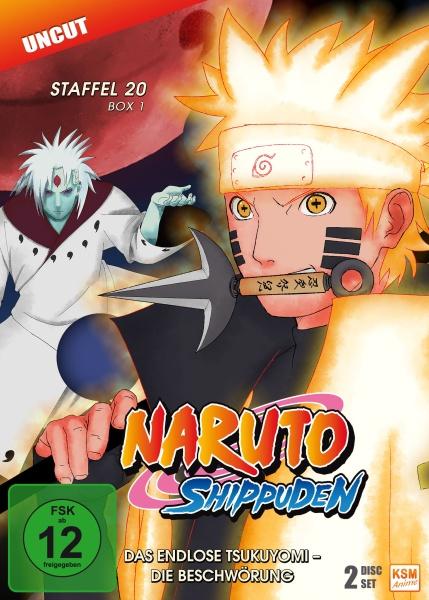 Naruto Shippuden - Das endlose Tsukuyomi - Die Beschwörung - Staffel 20.1: Episode 634-641 (2 DVDs)