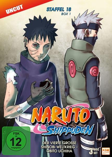 Naruto Shippuden - Der vierte große Shinobi Weltkrieg - Obito Uchiha - Staffel 18.1: Folge 593-602 (2 DVDs)