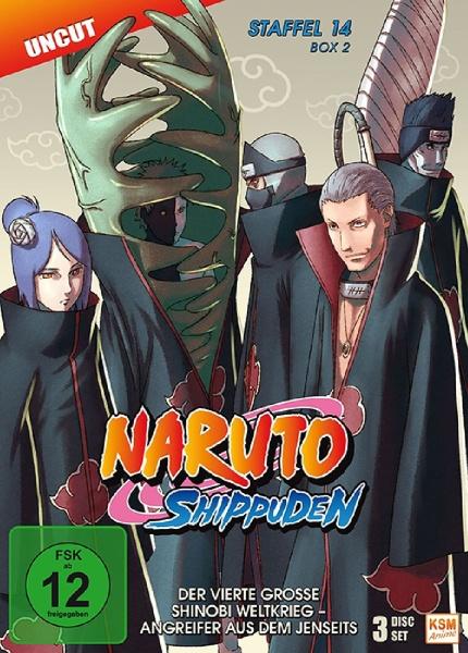 Naruto Shippuden - Der vierte große Shinobi Weltkrieg - Angreifer aus dem Jenseits - Staffel 14 - Box 2 - Episode 529-540 (3 DVDs)