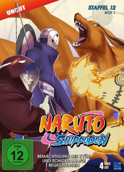 Naruto Shippuden - Bemächtigung des Kyubi und schicksalhafte Begegnungen - Staffel 12, Box 1: Folge 463-487 (4 DVDs)