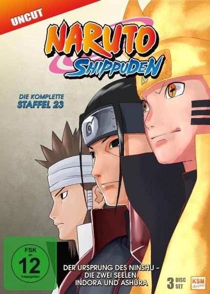 Naruto Shippuden - Der Ursprung des Ninshu - Die zwei Seelen, Indora und Ashura - Staffel 23: Episode 679-689 (3 DVDs)