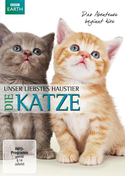 Unser liebstes Haustier - Die KATZE